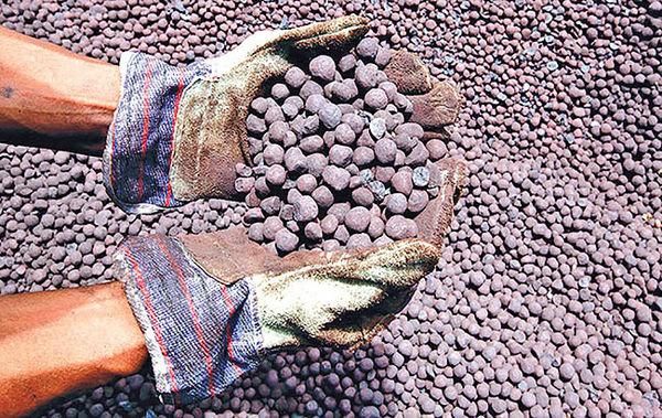 استارت رفع محدودیتها از صادرات گندله