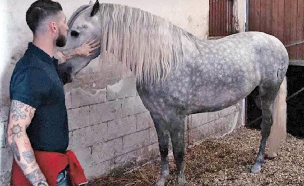 اسب سرخیو راموس قهرمان جهان شد
