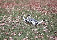 سگ روباتی که با شما پیادهروی میکند