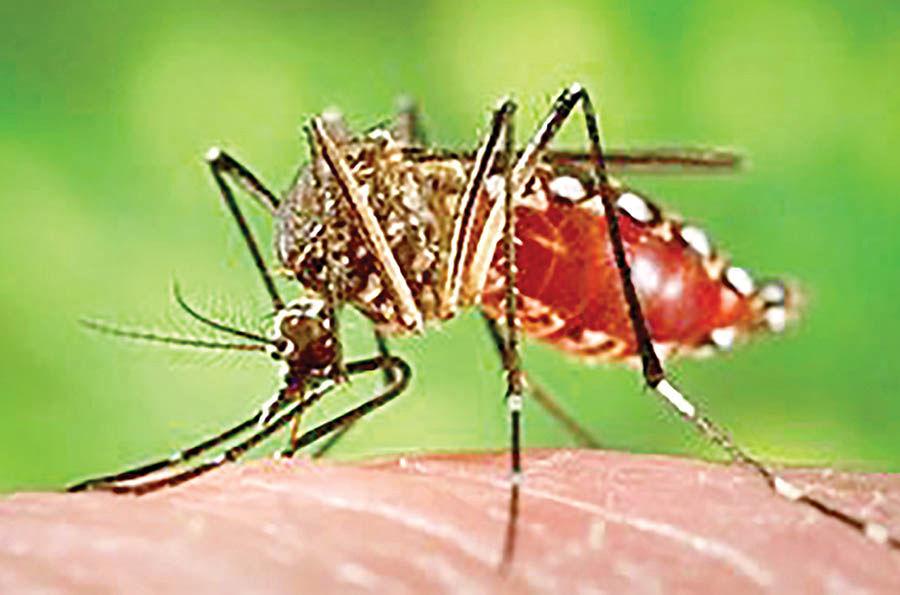 تشخیص ویروس به وسیله یک حسگر