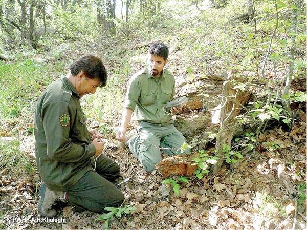 حفاظت مشارکتی آخرین راهکار حفاظت از محیطزیست