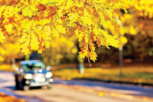 پاییز بهترین فصـل خرید خودرو؟