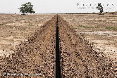 ۲۸۰ هزار هکتار از دشتهای خوزستان  و ایلام در مرحله بهرهبرداری