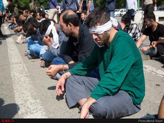 دستگیری ۱۴۰ سارق و زورگیر حرفهای