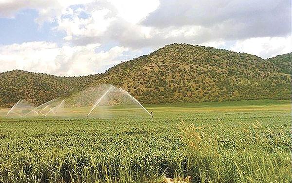 زمین جدید کشاورزی در آذربایجان