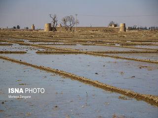 آب زایندهرود به کشاورزان شرق اصفهان رسید