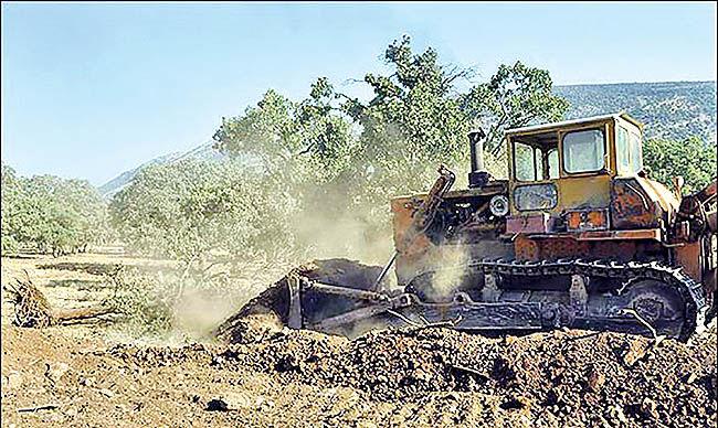 تخریب 29 هزار و 802 هکتار از عرصههای منابع طبیعی 