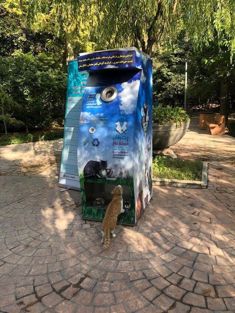 ابتکار شهرداری تهران برای حمایت از حیوانات شهری/ یک وعده غذا در ازای تحویل هر بطری دور ریختنی
